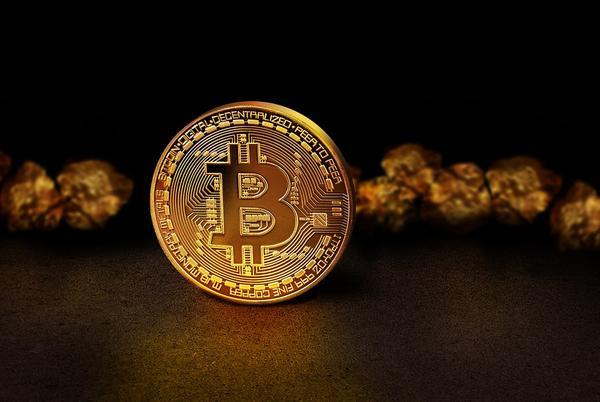 स्लावी कुचचौकोव ने अपना डिजिटल सिक्का, स्लाव सिक्का पेश किया